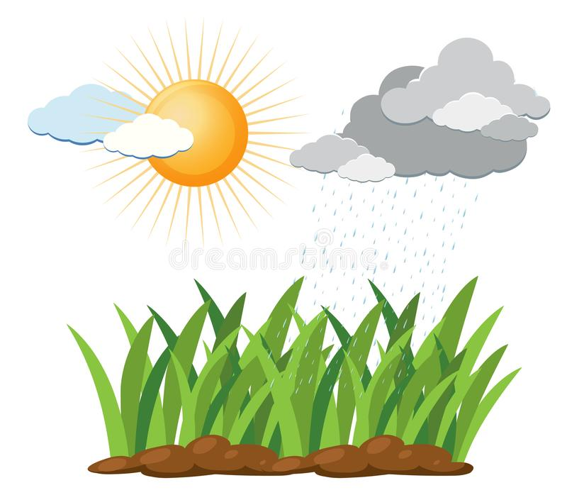 Science Education of Water Cycle stock illustration