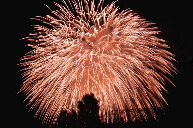 The science of Firework. Let`s Go Celebrate! A fireworks displayed against the night sky royalty free stock photography
