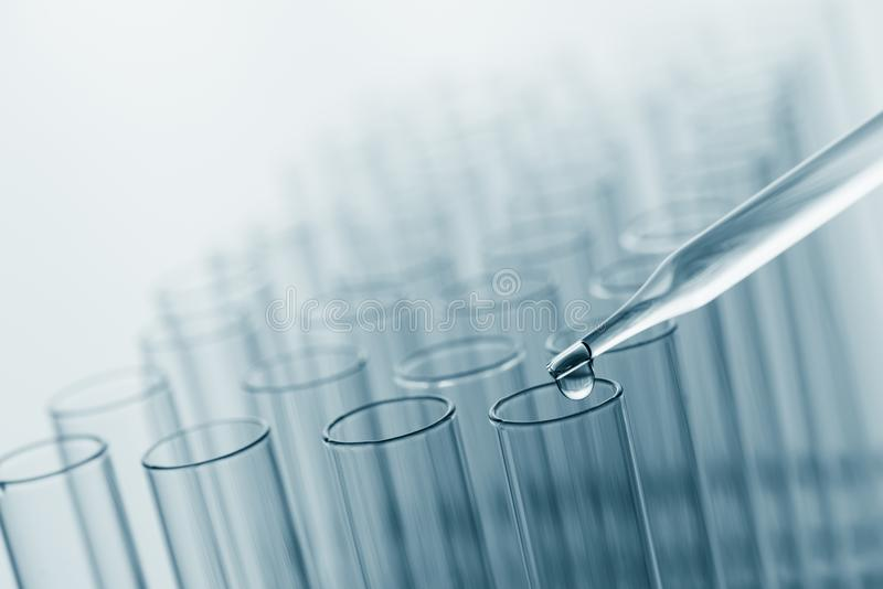 Science laboratory test tubes , lab equipment for research new m royalty free stock images