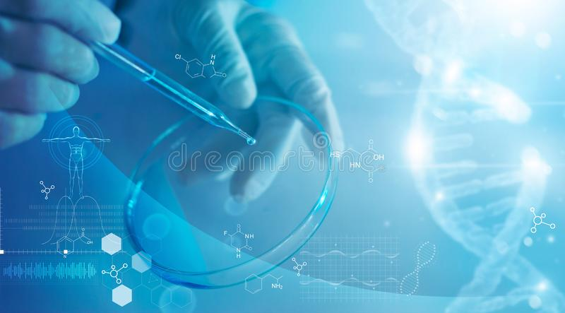 Science and medicine, scientist analyzing and dropping a sample into a glassware, experiments containing chemical liquid stock images