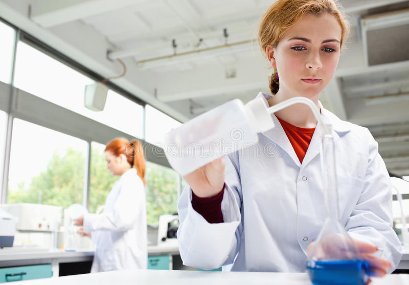 Download Science students working stock image. Image of flask - 21247241