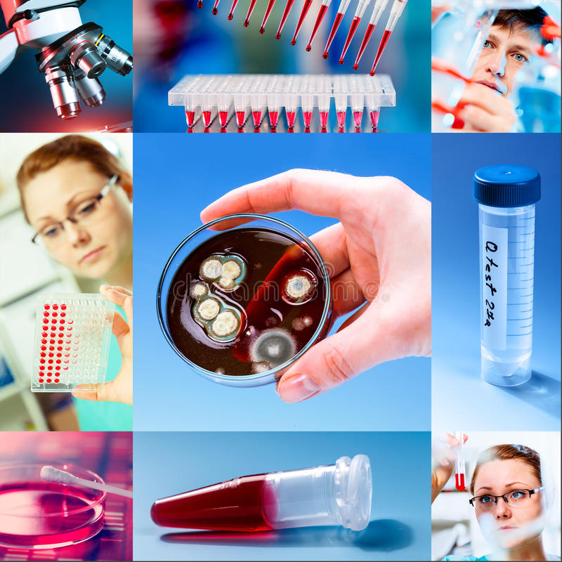 Scientific collage royalty free stock photography