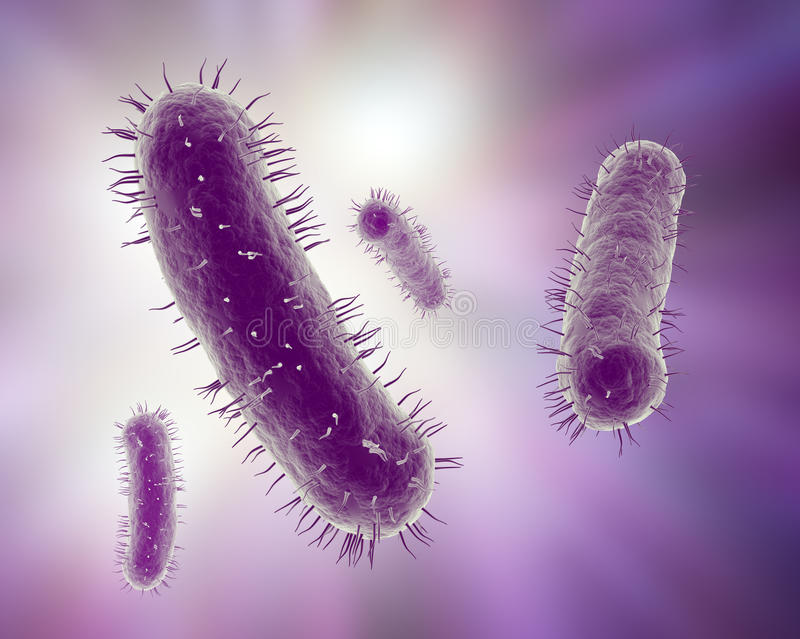 Scientific illustration of bacteria royalty free stock photo