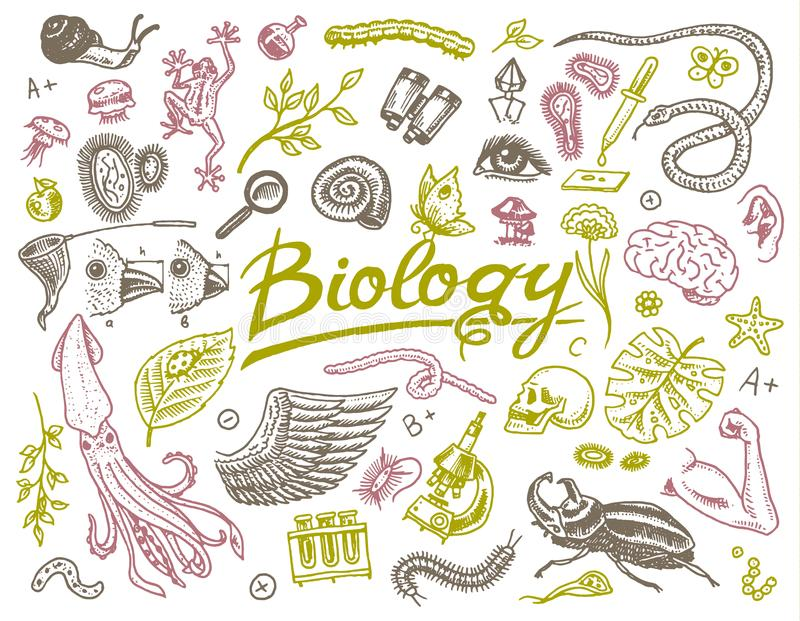 Scientific laboratory in Biology. Icon Set of Biochemistry Research. Living creatures organisms molecules. Medicine in royalty free illustration