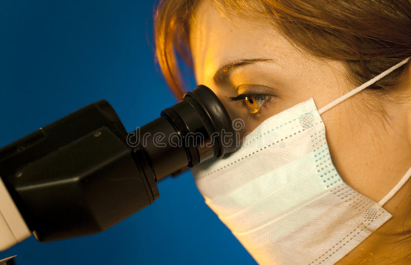 Scientific Looking In Microscope Royalty Free Stock Images