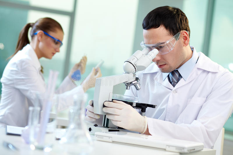Download Scientific research stock image. Image of looking, professional - 26268209
