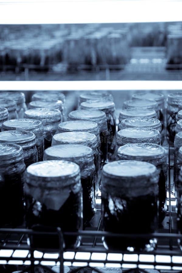 Download Scientific Research Incubator Stock Photo - Image: 11199340