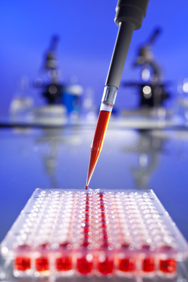 Scientific Research With Pipette & Cell Plate. Medical concept shot of a scientist in a laboratory creating samples of a red solution with a pipette and 96 well royalty free stock photos
