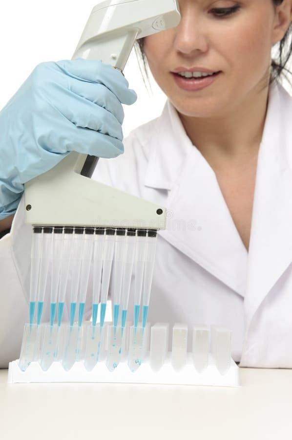 Scientifique dans le laboratoire images stock