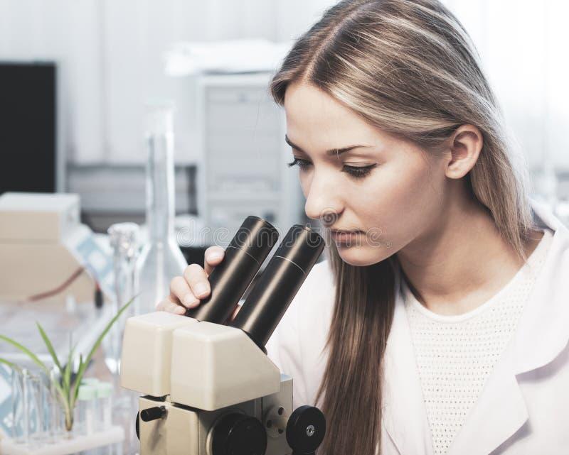 Scientifique dans le laboratoire chimique image stock