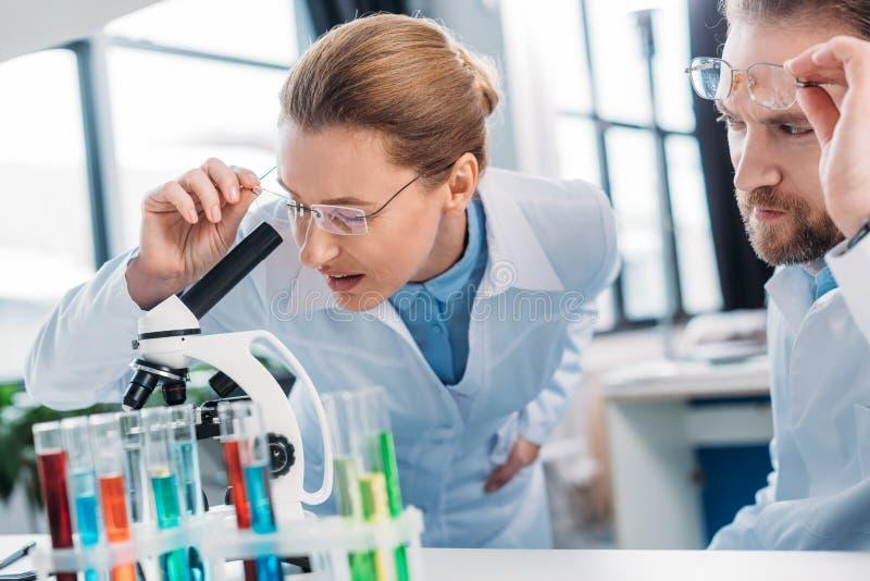scientifique dans le manteau de laboratoire regardant par le microscope sur le réactif avec le collègue près photographie stock