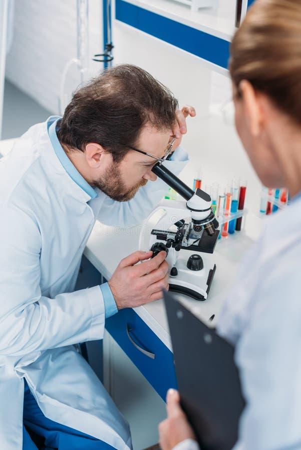 scientifique dans le manteau de laboratoire regardant par le microscope sur le réactif avec le collègue près photos stock