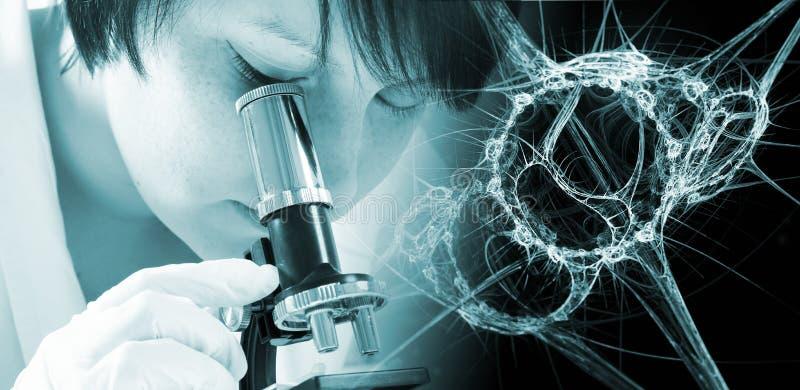 Scientifique de fille regardant des bactéries par le microscope image libre de droits