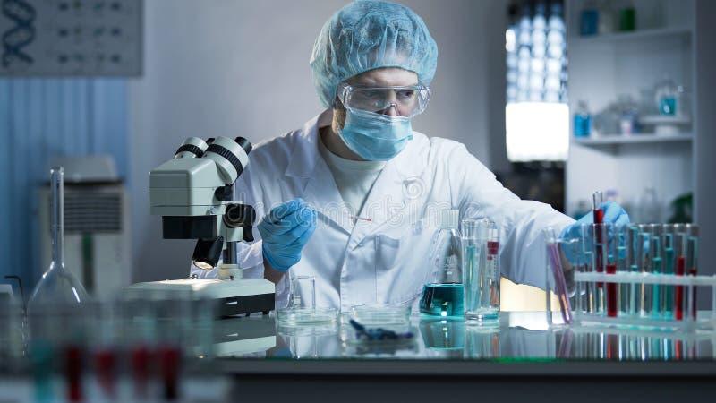 Scientifique de laboratoire prélevant la prise de sang pour étudier des branches d'ADN pour le processus de clonage photos stock