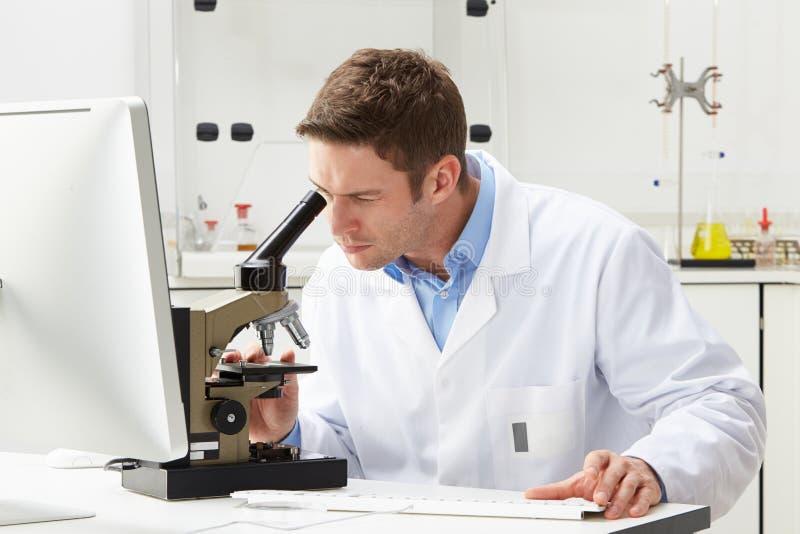 Scientifique Looking Through Microscope dans le laboratoire photographie stock libre de droits