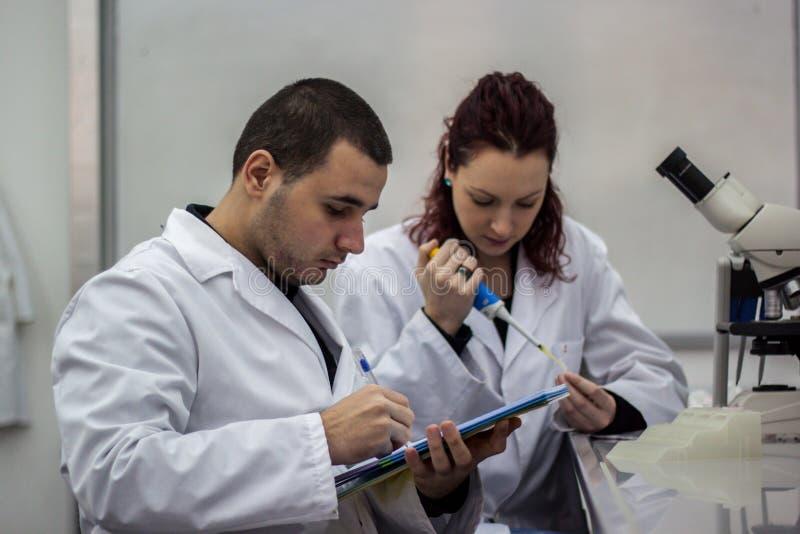 Scientifique moderne travaillant avec la pipette dans le laborator de biotechnologie photographie stock libre de droits