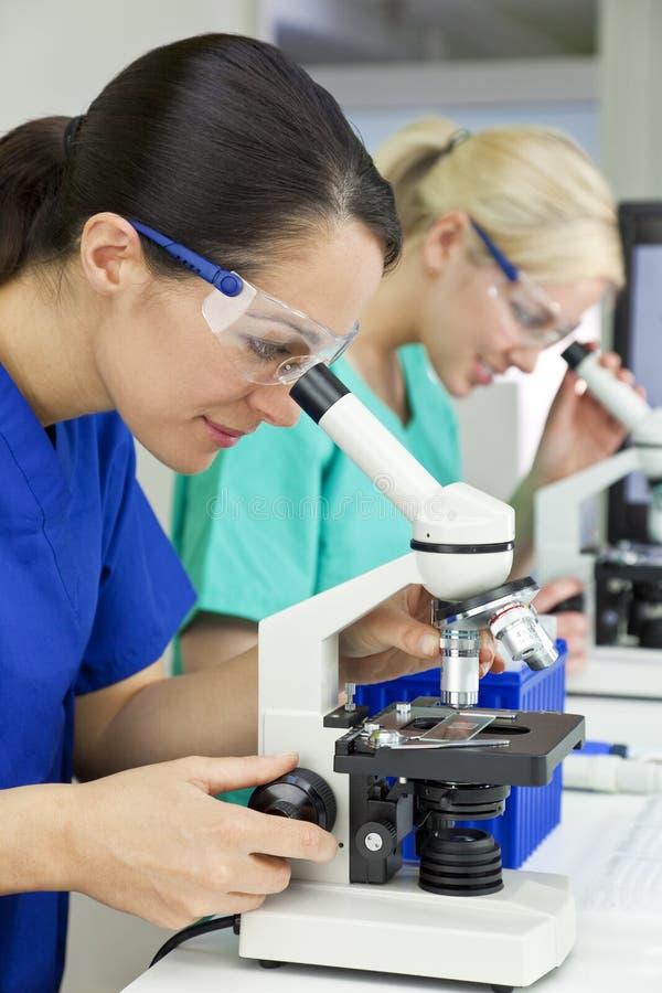 Scientifiques féminins à l'aide des microscopes dans le laboratoire photo stock