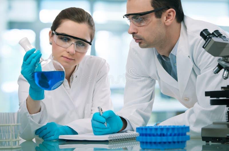 Scientifiques travaillant dans un laboratoire de recherche image stock