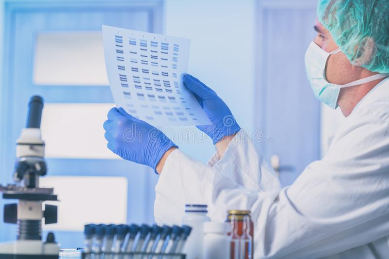 Scientist analizing DNA sequence stock photos