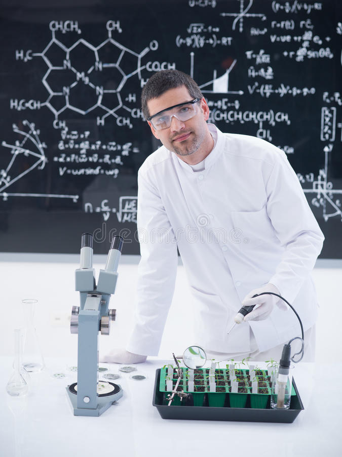 Download Scientist Analyzing Plants In Lab Stock Image - Image: 31258709