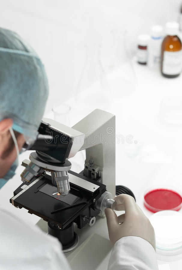 Scientist conducting genetic research royalty free stock photos