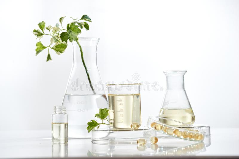 The scientist or doctor make herbal medicine from herb in the laboratory on the table .alternative treatment. show hand and royalty free stock images