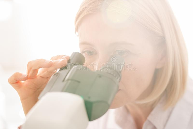 Scientist doing research. Close-up of concentrated genetic engineering scientist using modern microscope while doing research in laboratory royalty free stock images