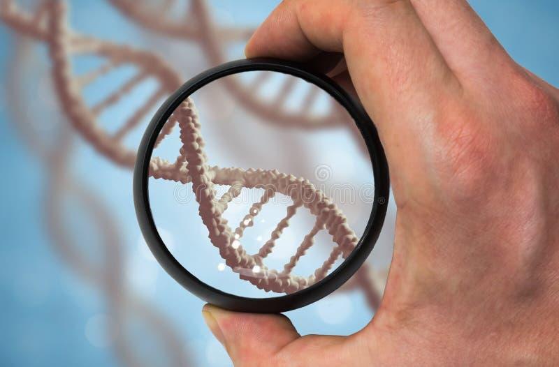 Scientist examinates DNA molecule. Genetics research concept royalty free stock photography