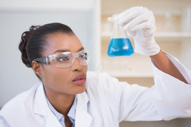 Scientist examining petri dish with blue fluid inside stock photo