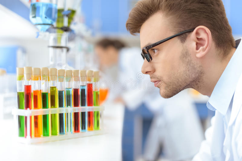 Scientist in eyeglasses looking at test tubes with reagents in lab. Side view of man scientist in eyeglasses looking at test tubes with reagents in lab stock images