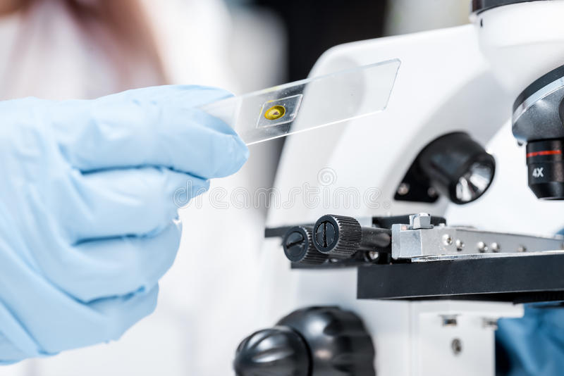 Woman In A Laboratory Microscope With Microscope Slide In Hand