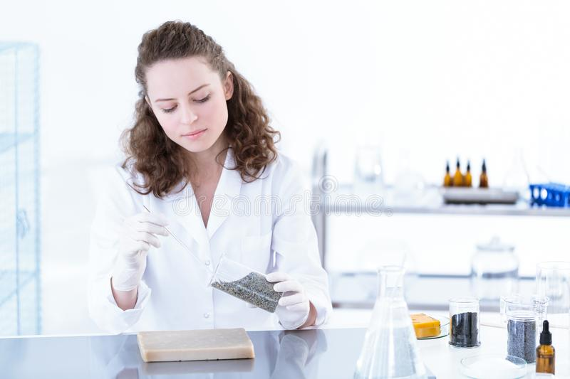 Scientist in lab royalty free stock photo