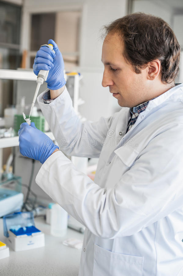Scientist in the laboratory filling test tubes with pipette. Male scientist in the medical laboratory filling test tubes with pipette. Close up royalty free stock images