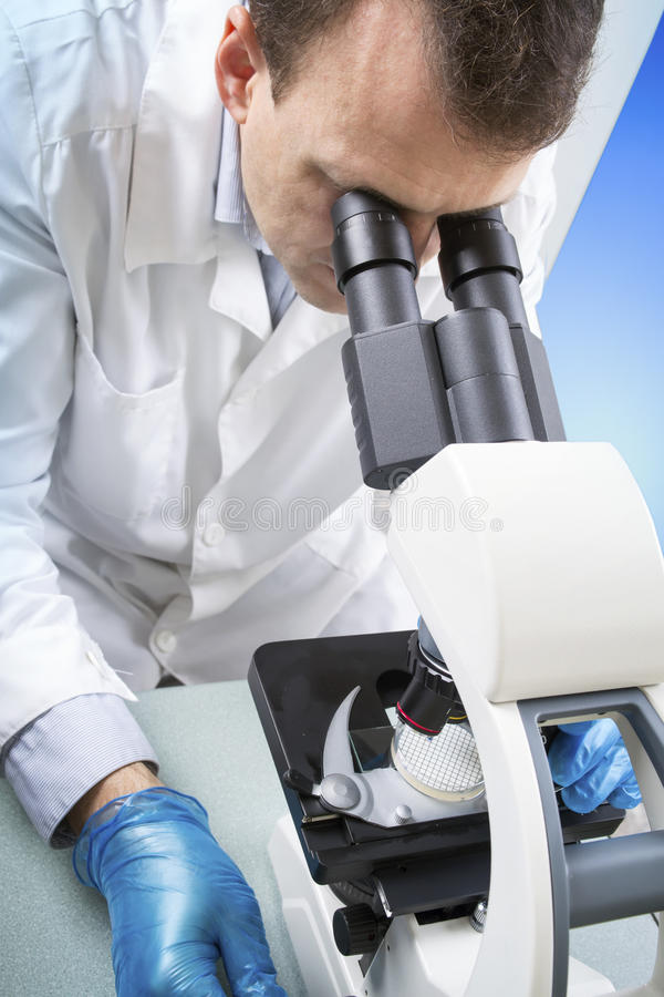 Scientist looking through microscope in laboratory stock images