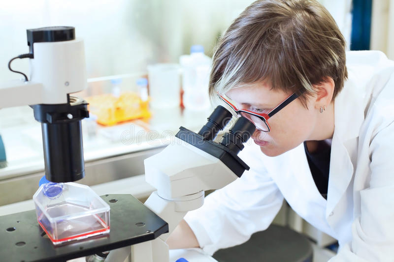 Scientist looking at the microscope stock image