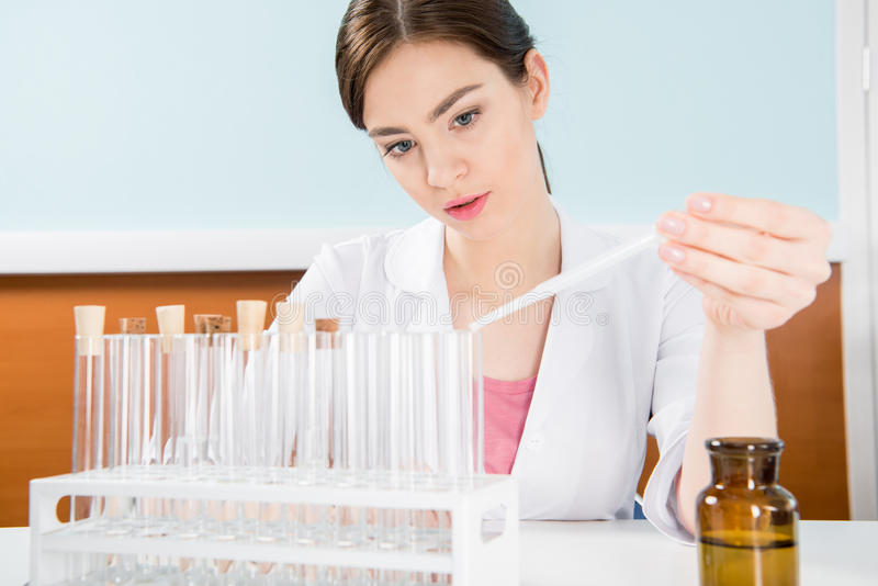 Scientist making experiment. Concentrated young female scientist making experiment with reagent and test tubes in laboratory royalty free stock images