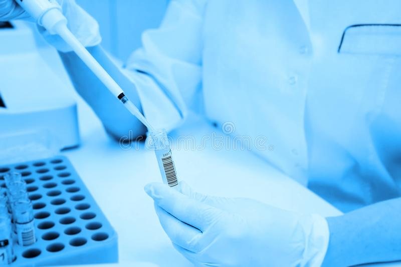 A laboratory scientist with a dispenser in his hands conducts experience or analyzes royalty free stock photo