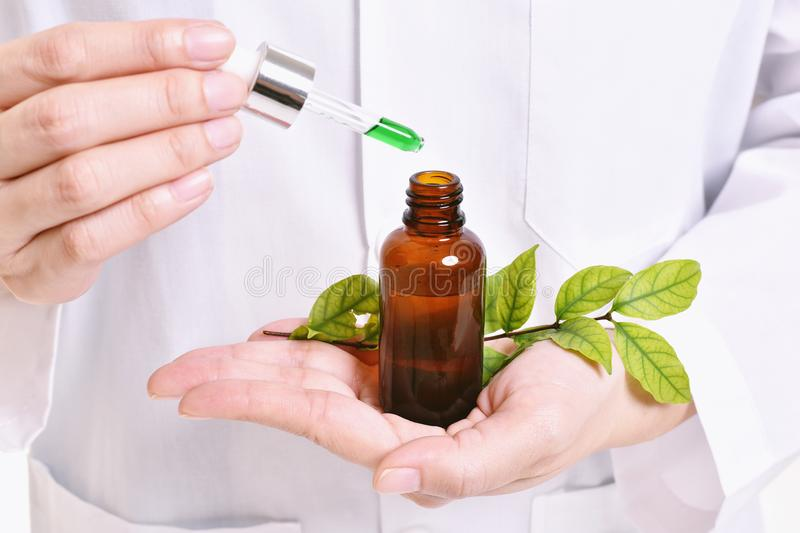 Scientist with natural drug research, Green herbal medicine discovery at science lab. Selective Focus royalty free stock images