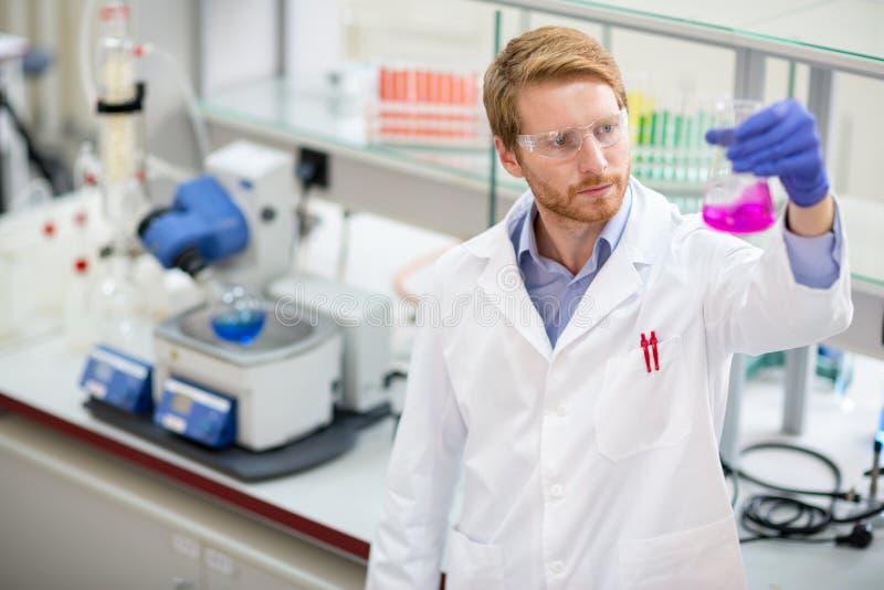 Scientist observing liquid reagent. Young scientist observing liquid reagent in laboratory stock images