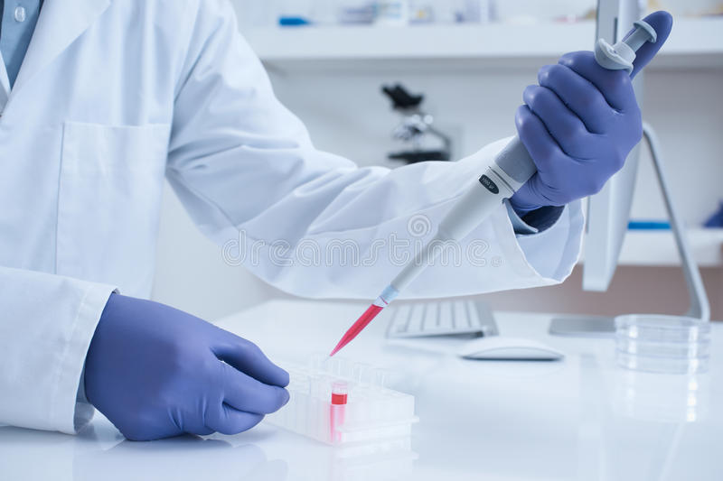 Scientist processing DNA sample in laboratory stock images