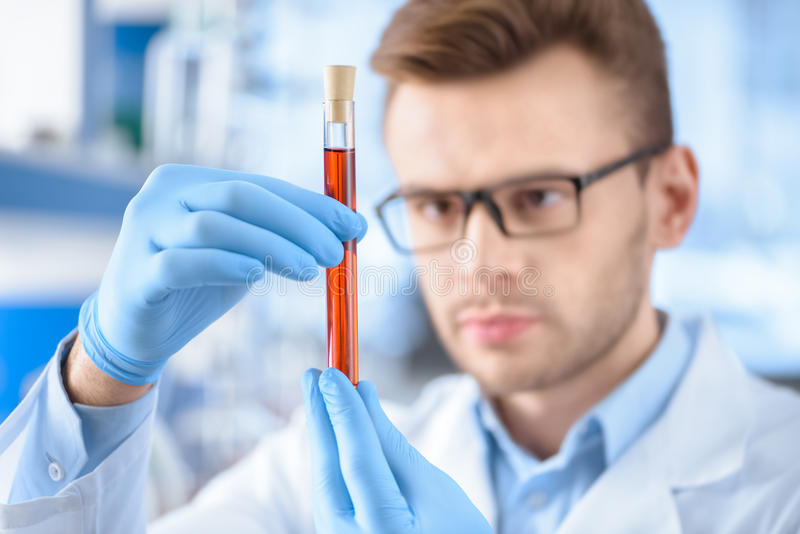 Scientist in protective gloves holding test tube with reagent. Man scientist in protective gloves holding test tube with reagent royalty free stock image