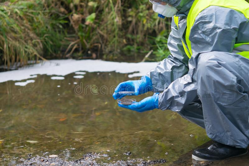 Scientist in a protective suit and mask, collects biomaterials from the water, for analysis, in a Petri dish stock images