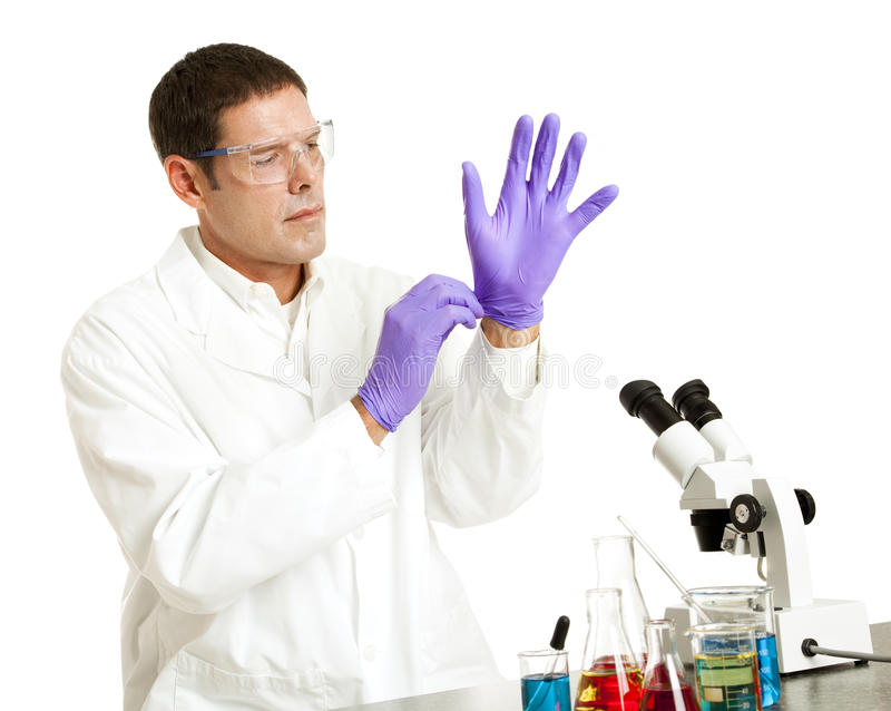 Scientist Puts on Gloves. Scientist putting on rubber gloves to protect from chemicals. Isolated on white royalty free stock image
