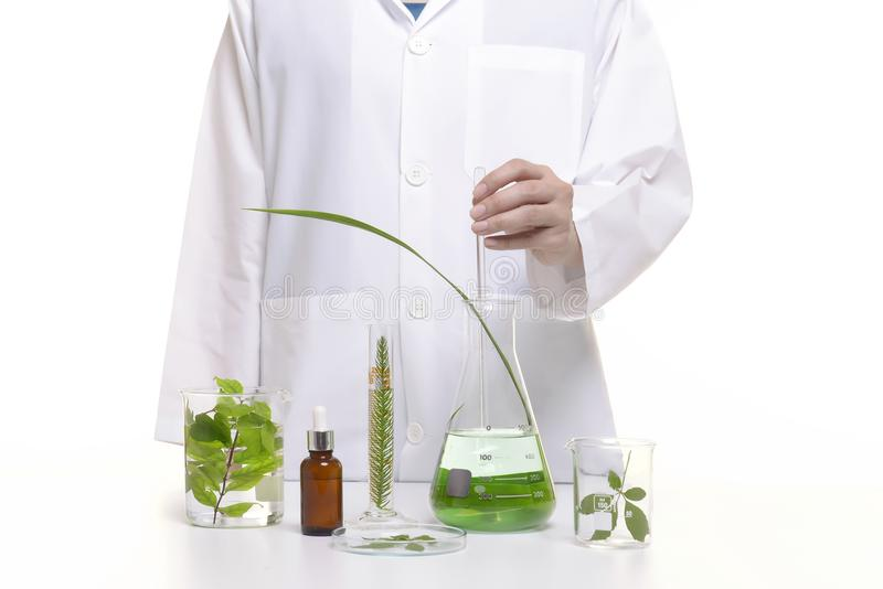 Scientist study and research liquid medicine from natural herbal royalty free stock images
