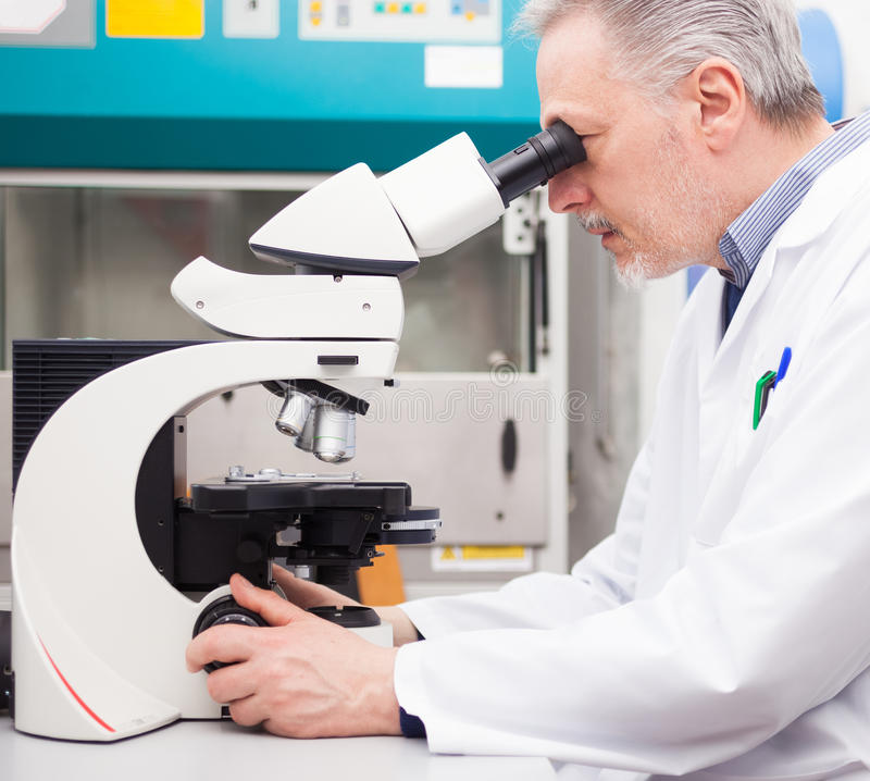 Scientist using a microscope stock image