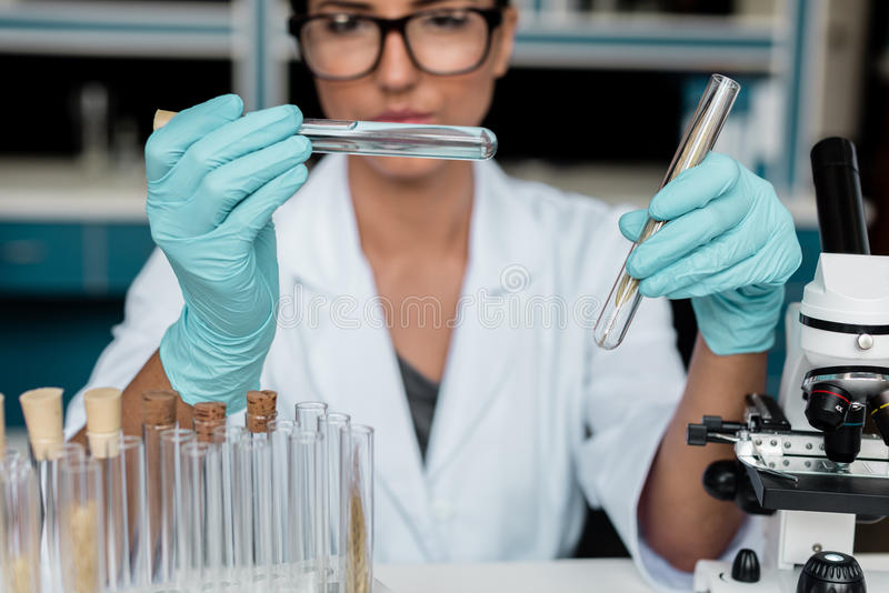 Scientist in white coat examining test tubes while making experiment in chemical lab. Professional scientist in white coat examining test tubes while making royalty free stock photography
