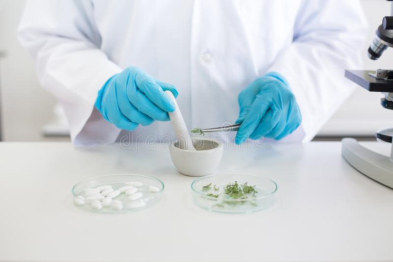 Scientist woman using mortar and pestle mashed for research plant with pill medical.in laboratory,Close up stock image