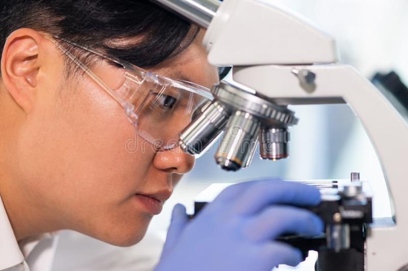 Scientist working in lab. Asian doctor making medical research. Laboratory tools: microscope, test tubes, equipment. Biotechnology, chemistry, science royalty free stock image