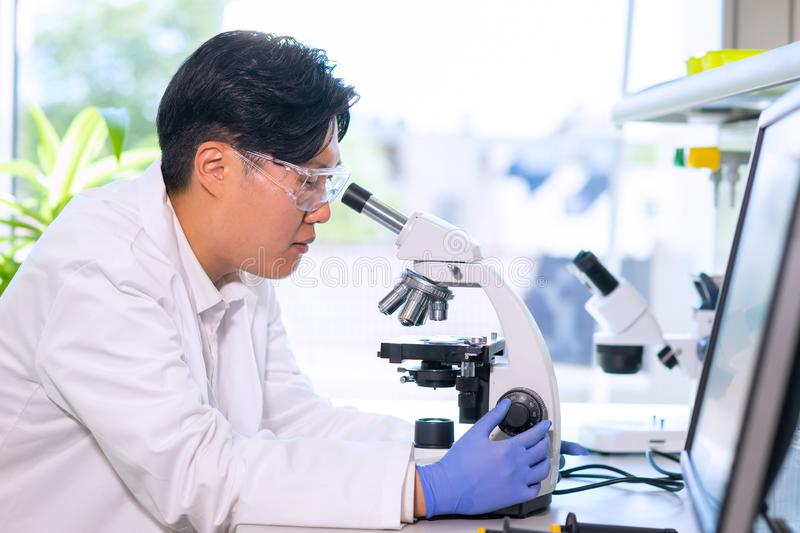 Scientist working in lab. Asian doctor making medical research. Laboratory tools: microscope, test tubes, equipment. Biotechnology, chemistry, science royalty free stock photography