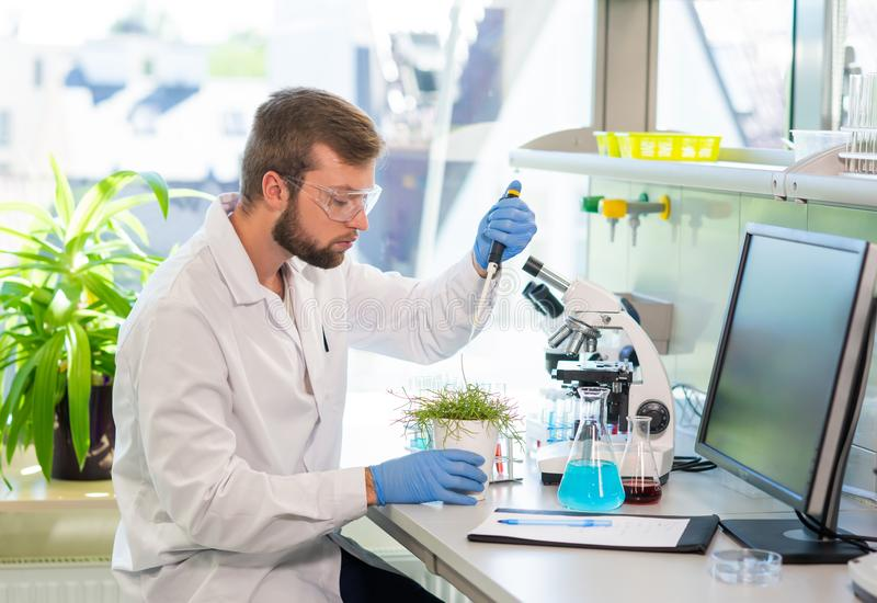 Scientist working in lab. Doctor making microbiology research. Laboratory tools: microscope, test tubes, equipment. Biotechnology, genetics, biochemistry royalty free stock images